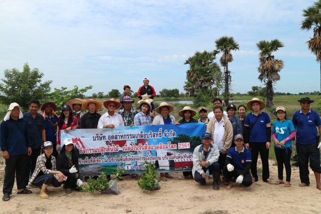 Manager and employees of Pimai Salt Co.,Ltd. and Thai Refined Salt Co., Ltd. have planting trees (500 trees) for increasing green area on concession of Pimai Salt area.